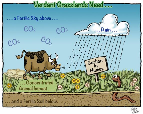 viv-forbes-green-pastures