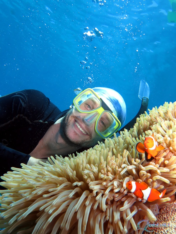 Dive boat operators say Great Barrier Reef in near pristine condition; mass hysteria by Greens and ALP harming tourism