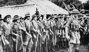 Australian 39th Battalion at Kokoda fought off the Japs
